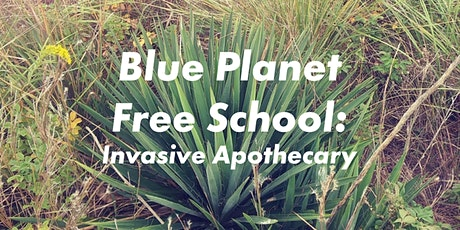 Blue Planet Free School: Invasive Apothecary with Alyssa Dennis tickets