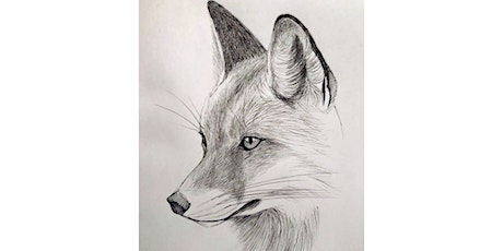 60min Learn to Sketch Animals: Fox @1PM (Ages 6+) tickets