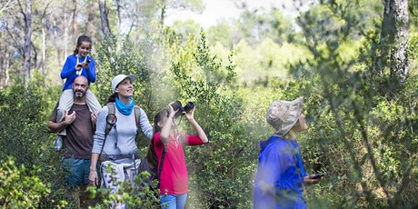 Points to Peaks Festival -  Toohey Forest Ecowalk tickets