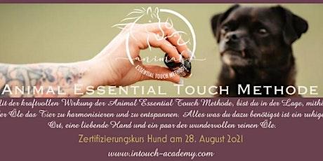 Animal Essential Touch Methode - Zertifizierungskurs Hunde Tickets