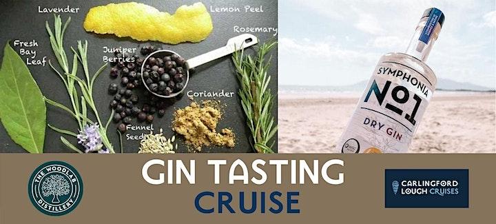 Carlingford Lough Summer Gin Cruise image