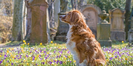 Movie Dogs and Chicago's Oldest Pet Cemetery tickets