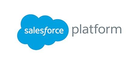 4 Weekends Certified Salesforce Developer Training course Brussels tickets
