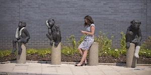 Southmead Hospital Public Art Programme Film Viewing an...