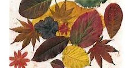 Leaf Collage @ Bridgewater Library - School Holiday Program tickets