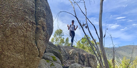 The Wilderness Wanderer's Hike Mt Domain tickets