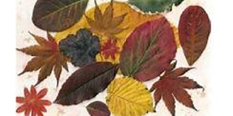 Leaf Collage @ Bothwell Library School Holiday Program tickets