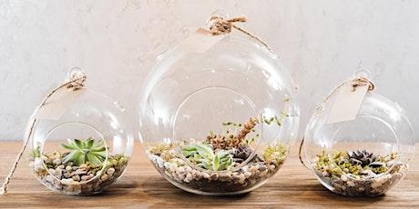 July School Holidays:  Succulent Terrarium workshop tickets