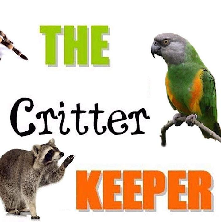 The Critter Keeper at Insch Hospital Gardens image