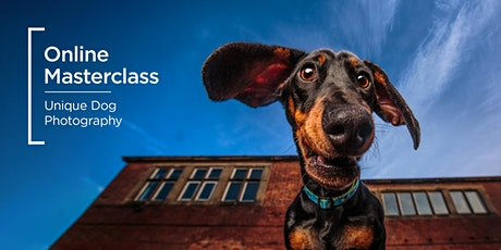 Online Masterclass | Unique Dog Photography tickets