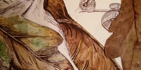 Creative Mindfulness Drawing from Nature (shorter seated session) tickets