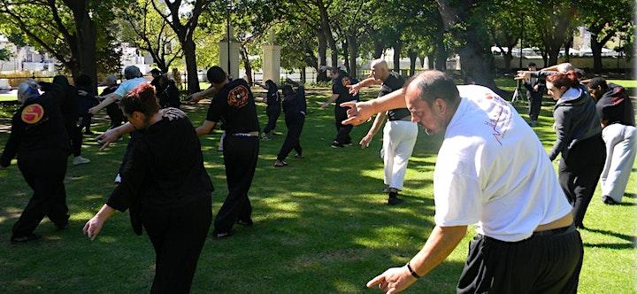 Free 5 Days HeaIth Qigong Training - Ba Duan Jin/8 Section Brocade image