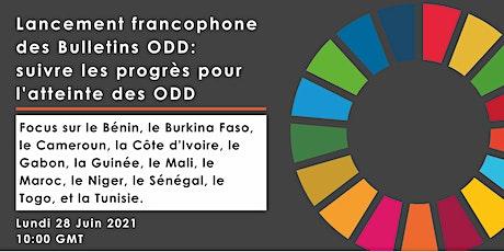 Afrobarometer SDGs regional webinar on Francophone countries (FR, EN trans) billets