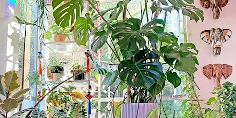 Plant Workshop with the Indoor Jungle and Coral and blush tickets