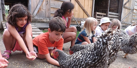 Family Farm Fun! tickets