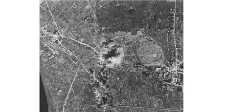 Allied Bombing of Pompeii in AD1943 (online lecture) tickets