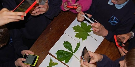 Citizen Science for Education in Sustainable Development - multiplier event tickets