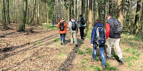 So,04.07.21 Wanderdate Single Wandern im Lennebergwald für 40-65J Tickets