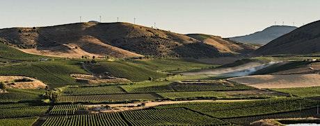WINE TASTING: Vinos de Sicilia entradas