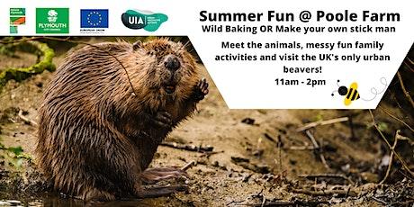 Summer Fun at Poole Farm! tickets