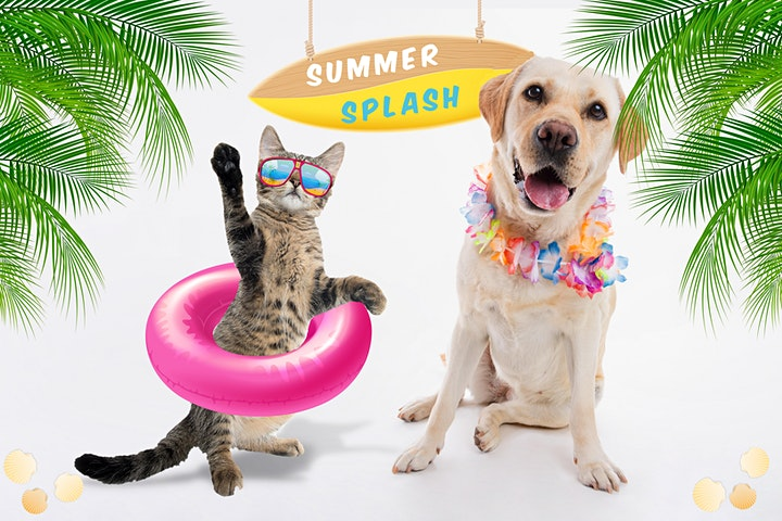 Virtual Bingo for the Animals - Summer Splash Edition image