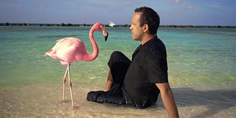 The Mystery of the Pink Flamingo + Q&A (Screening Series 2021) tickets