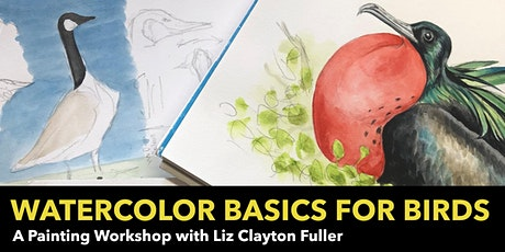 Watercolor Basics for Birds: A Painting Workshop with Liz Clayton Fuller bilhetes