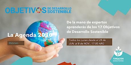 CICLO DE WEBINARS : La Agenda  2030  17 ODS entradas