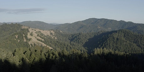 Guided Virtual Hike: Buckeye and Howlett Forests 7-27-21 tickets