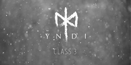 YNDI Yoga Series in the Gallery at 3S Artspace- class 3 tickets