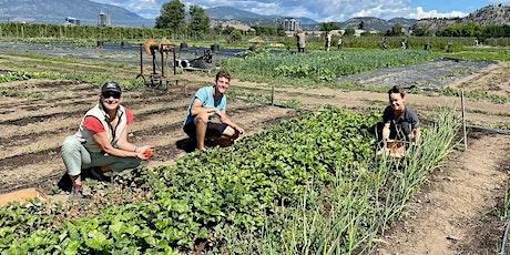 Okanagan Fruit Tree Project: Jun 23rd, 9:00am Farm Volunteer Day tickets