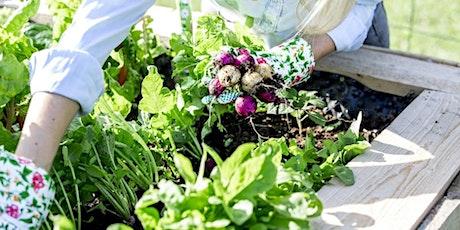 Backyard Gardening Online Workshop Session 5:  weeds, pests, and more! tickets
