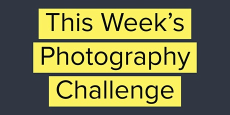 New Weekly Photography Challenge Announcement PLUS Live Photo Group Q&A tickets