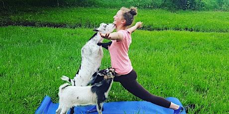 Goat Yoga @ Goat Shine tickets