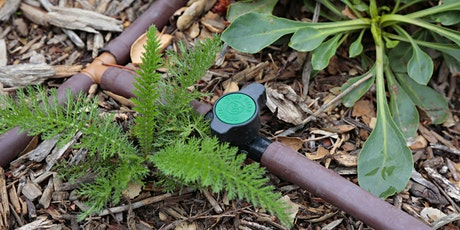 Irrigation Practices for Native Plant Gardens with Max Kanter tickets