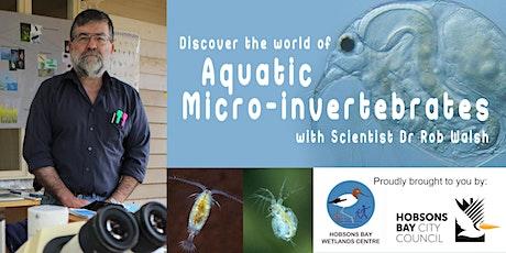 Discover the world of Aquatic Micro-Invertebrates tickets