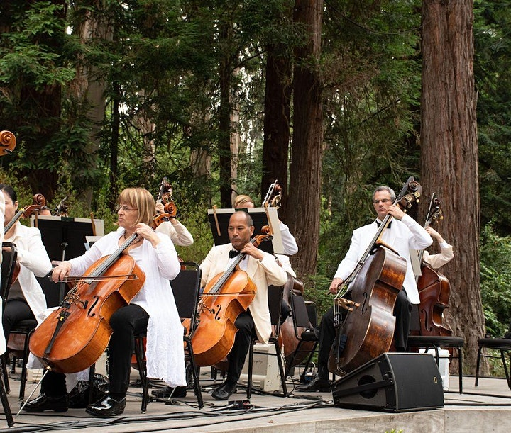 Stern Grove Festival featuring the San Francisco Symphony image