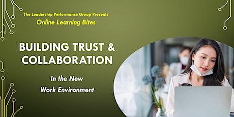 Building Trust & Collaboration (Online - Run 17) tickets