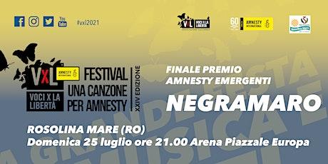 Voci per la Libertà - finale concorso emergenti +  Agnese Valle + NEGRAMARO biglietti