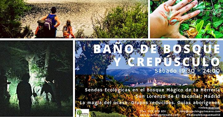 Baño de Bosque sábado 17 Jul - Crepúsculo Bosque La Herrería El Escorial image