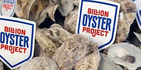 Summer on the Hudson: Billion Oyster Project Presentation tickets