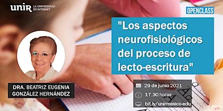 """Openclass """"Los aspectos neurofisiológicos del proceso de lecto-escritura"""" entradas"""