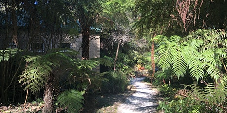 Self-Compassion in Nature Retreat For Professionals ( 7 or 4 days) tickets