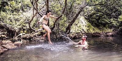 Hot Pools Trek