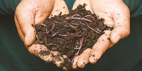 Worm Farming at home with Shane Hunter tickets