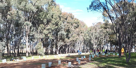 Chinamans Island Tree Planting Day tickets