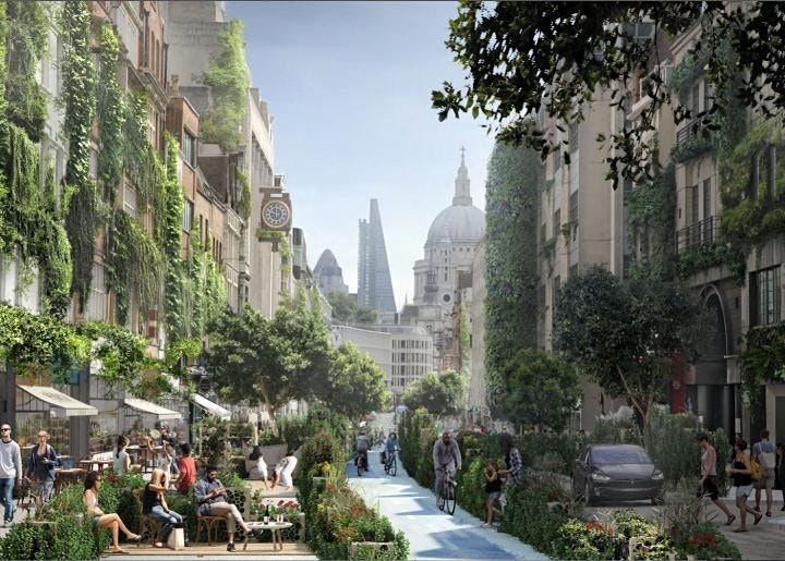 Urban Greening for City Resilience image