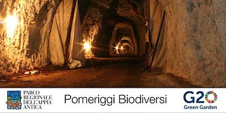 G20 Green Garden - Le cave romane della Caffarella biglietti