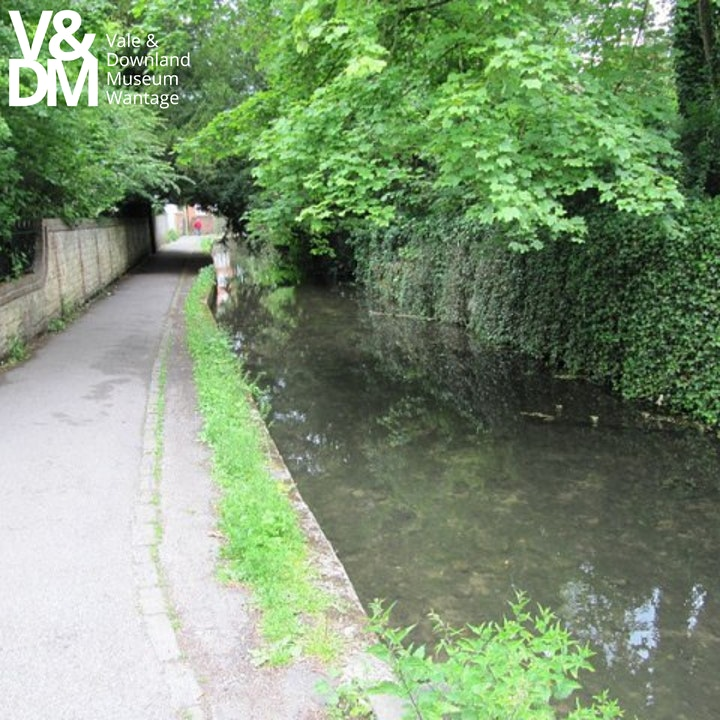Letcombe Brook Beasties image