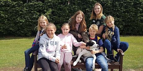 Cheltenham Animal Shelter's Animal Experience Dog Session tickets